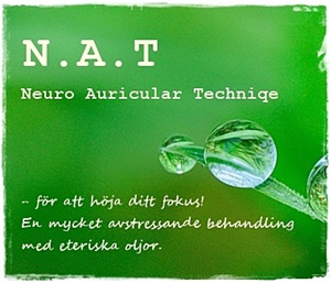 NAT Neuro Auricular Technique