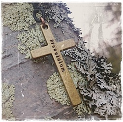 Cross necklace praesidium